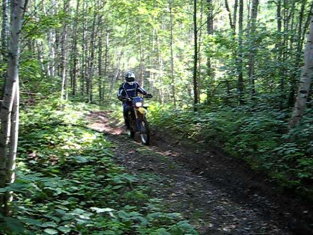 dirt-bikes-image-2