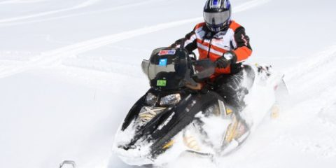 sled maintenance and purchase tips